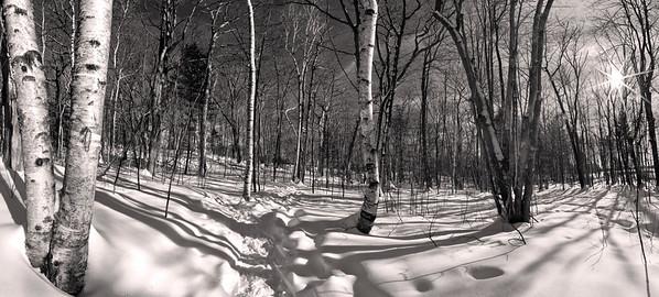 Gilsland Farm Audubon Center trail after a big snowfall.  Falmouth, Maine