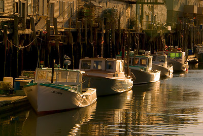 Golden Lobster Boats, behind Harbor Fish Market, Portland, ME All photographs are printed on high quality, professional Kodak metallic paper, unmatted, and shipped to you unframed so that you may choose your own matting and framing materials.  The following sizes are available unmatted: Unmatted prices: 8 x 10  $35 11 x 14  $50 16 x 20  $75 20 x 24  $100