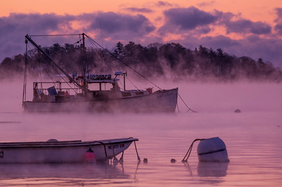 Misty January Dawn, Falmouth, ME