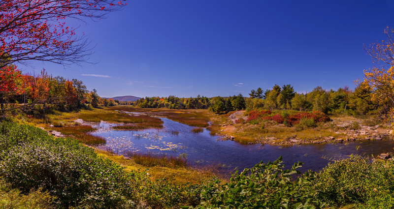 Duck Brook, Acadia National Park, Maine Panorama