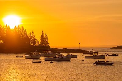 Morning Gold at Owl's Head Marina, Maine