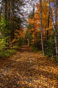 Somerset Road Autumn Vista 2, Greenville Maine area