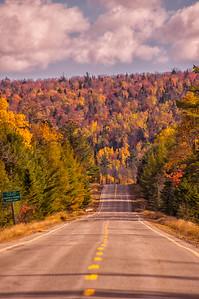 Moosehead Area Road and Foliage Vertical, Maine