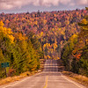 Moosehead Area Road and Foliage Vertical, Maine