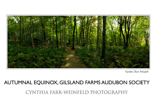 Autumnal Equinox at Gilsland Farms, Audubon Society meadow trail. Make sure when you order any panoramic posters to check the NO CROPPING option as they guide you through the order process.