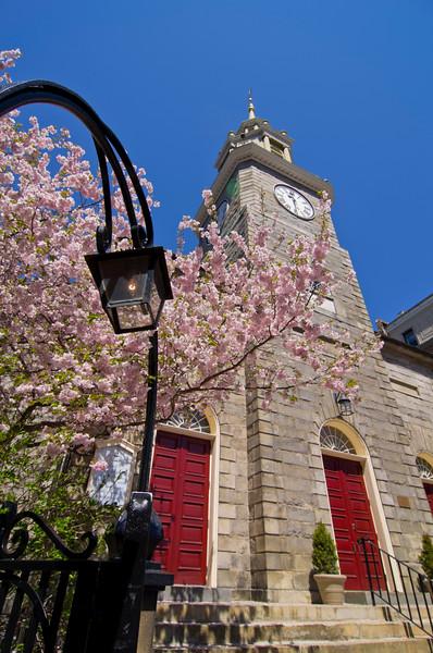 Cherry Blossoms at First Parish Church, Portland, Maine 3