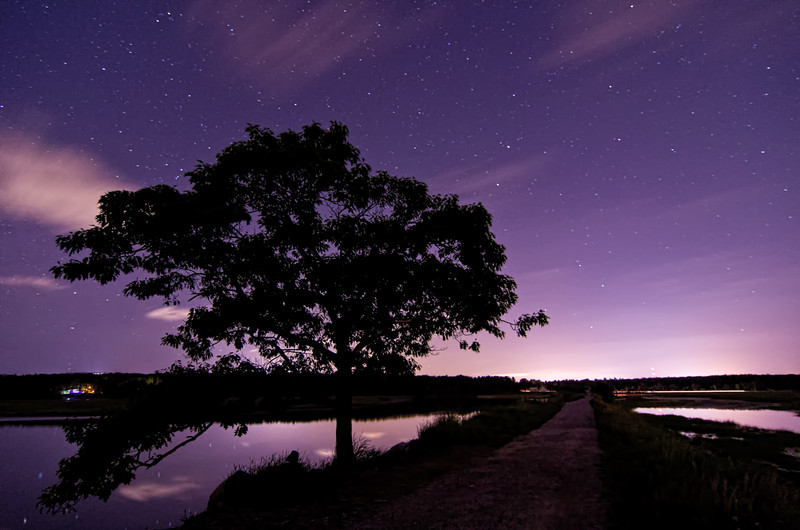 The Loner at Night<br /> <br /> My favorite lone tree in Scarborough Marsh late at night with a starry sky as backdrop.  The sound of crickets and the currents of water in the background was so beautiful.