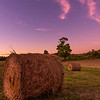 Harvest Time, Fuller Farm, Scarborough, Maine