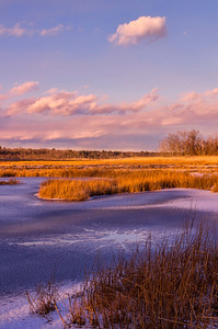 Massacre Pond 2, Scarborough Marsh, Maine, off the Black Point Road.