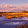 Massacre Pond 2, Scarborough Marsh, Maine, off the Black Point Road.