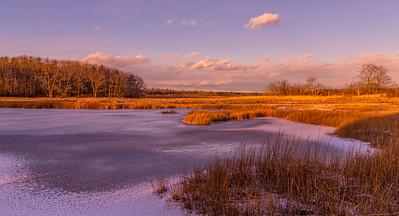 Massacre Pond, Scarborough Marsh, Maine, off the Black Point Road.