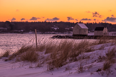 Willard Beach Winter Dune Grass, South Portland, ME