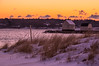 Willard Beach Winter Dune Grass, South Portland, ME