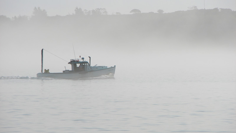 September Seas--I drove out to South Portland to capture foggy images and found this lobsterman, heading off for a day of work in the fog.