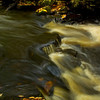 Saco River Detail, Autumn 2008