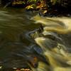 Saco River Detail, Autumn 2008
