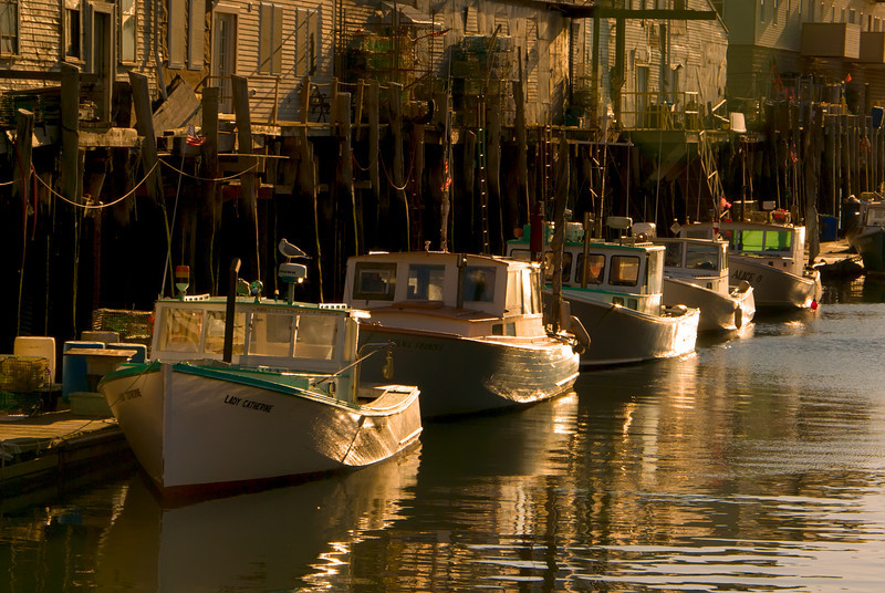 Golden Lobster Boats, Portland, Maine, November 2008