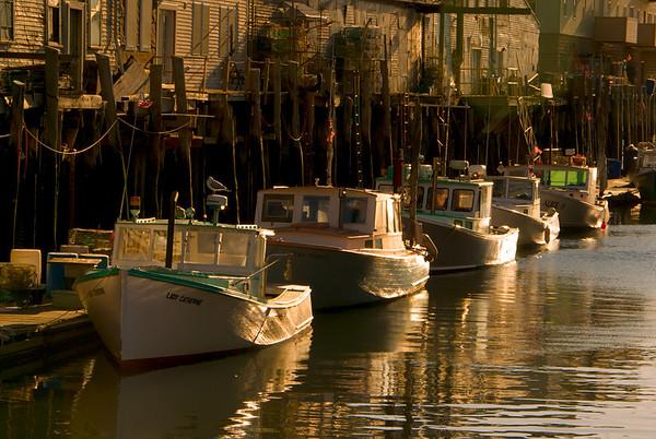 Golden Lobster Boats, Portland, Maine, November 2008