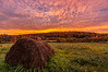 Hay bale sunrise, Wilton, Maine