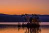 Moose Pond Sunrise, Bridgton, maine