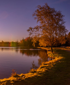 Dawn Pond Panorama, Somewhere off Route 26, Western Maine