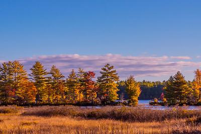 Shaker Bog, Western Maine
