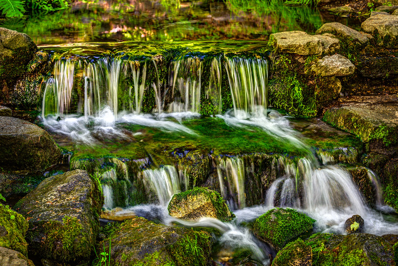 """Fern Springs in Yosemite National Park"