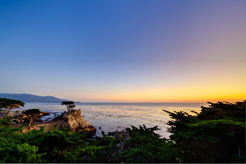 """""""Lone Cypress at Sunset"""" 17-mile Drive near Pebble Beach and Carmel, California with a tiny moon in the sky. I managed to be at the Lone Cypress for a nice sunset and tiny moon! Clear skies and just a nice glow lighting up the Cypress."""