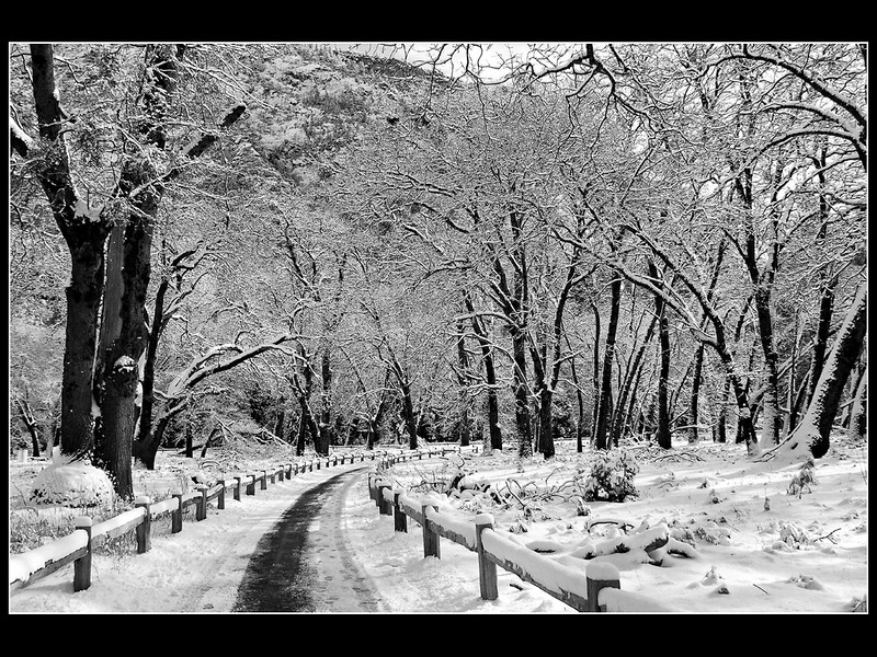 """Infinite Loop in Winter""  Monochrome in Yosemite Valley"