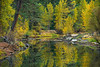 """Merced River in Fall"" Yosemite National Park Hopefully a sign of how things should look this fall! This image is from November a few years ago. Just love fall colors and reflections! Feel free to share and let me know if you like it. Nikon D800, Nikon 70-200mm f/2.8 @ 140mm. ISO 100, f/6.3 and .3 seconds exposure - with a tripod of course!!   Copyright John Harrison Photography — at Yosemite National Park."