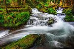 """Panther Creek in Spring""  Washington Waterfalls in Spring"