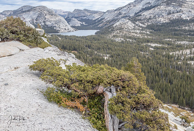 Olmstead Point, looking toward Tenaya Lake