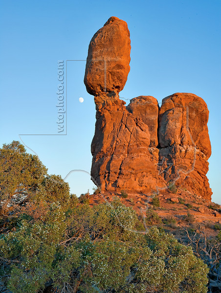 Balanced Rock, Cedar, and Moon, Sunset<br /> Arches National Park, Utah