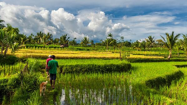 Indonesia, Lombok