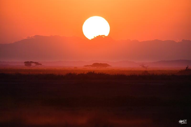 Ambseli Sunrise