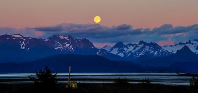 Homer Moonrise