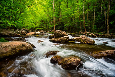 Tremont, Great Smoky Mountains National Park