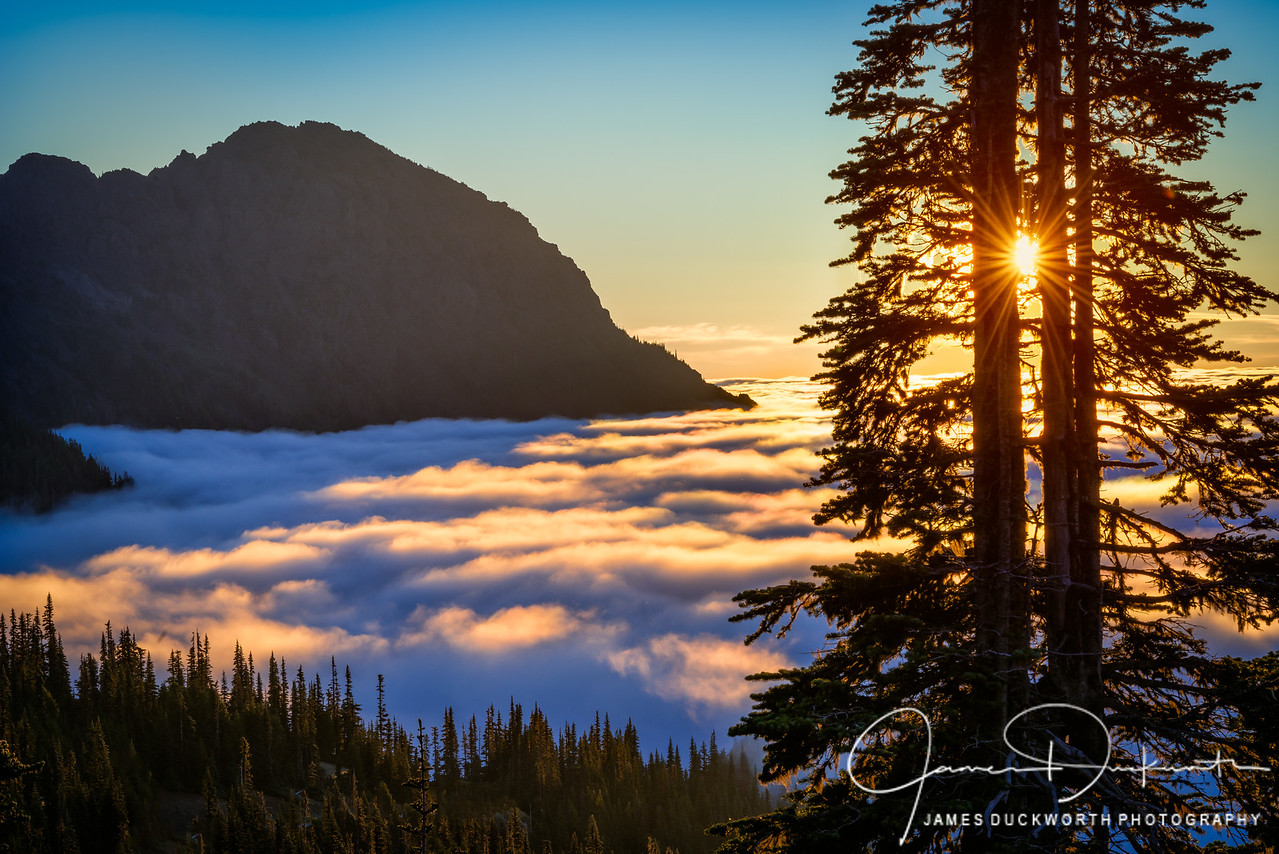 Sunrise, Hurricane Ridge, Olympic Naitonal Park