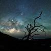 Milky Way Maunakea  ©2019  Janelle Orth