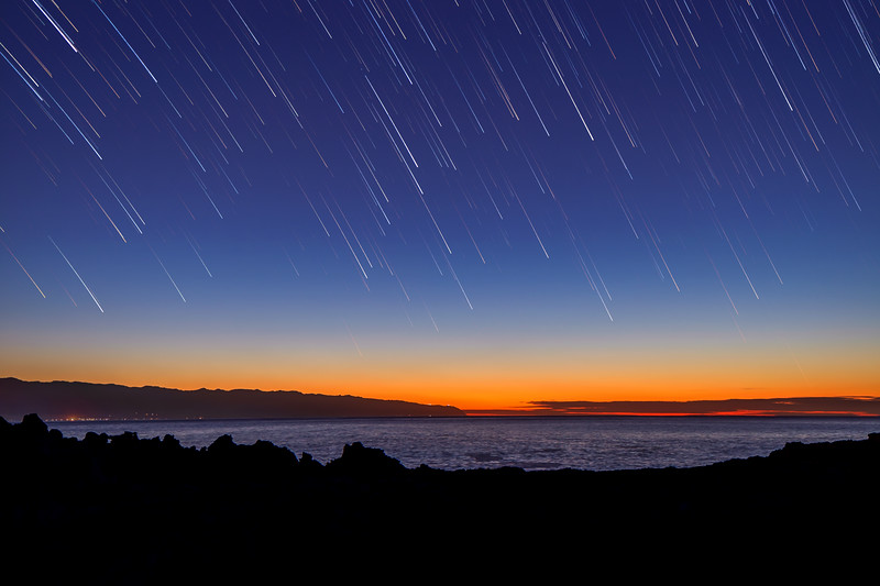 Shark's Cove Star-trails  ©2019  Janelle Orth