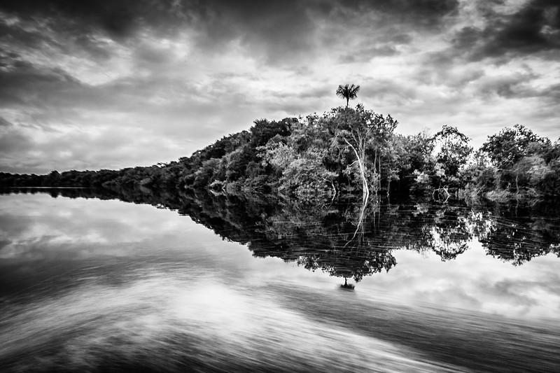 Amazon - Anavilhanas national park