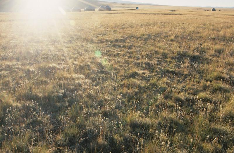 Dawn at Son Kul, Kyrgyzstan
