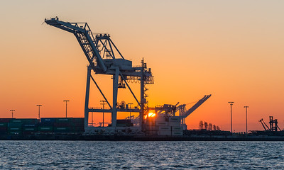 Oakland Port Cranes at Sunrise