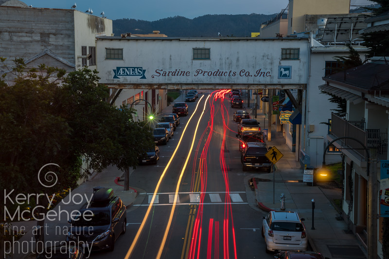 Cannery Row Light Trails