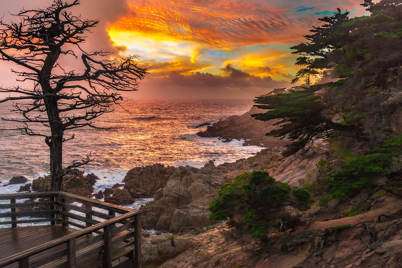 Lone Cypress Point Vista Sunset
