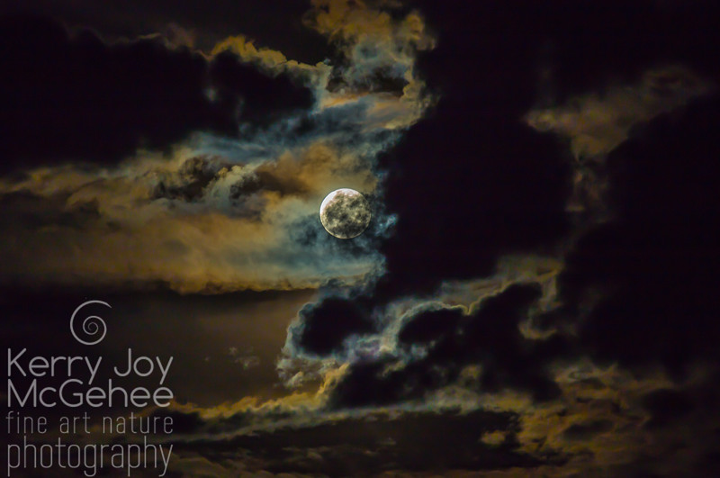 Full Cold Moon #2