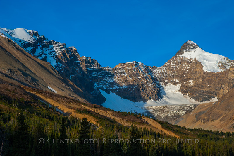 Mount Athabasca - Jasper National Park