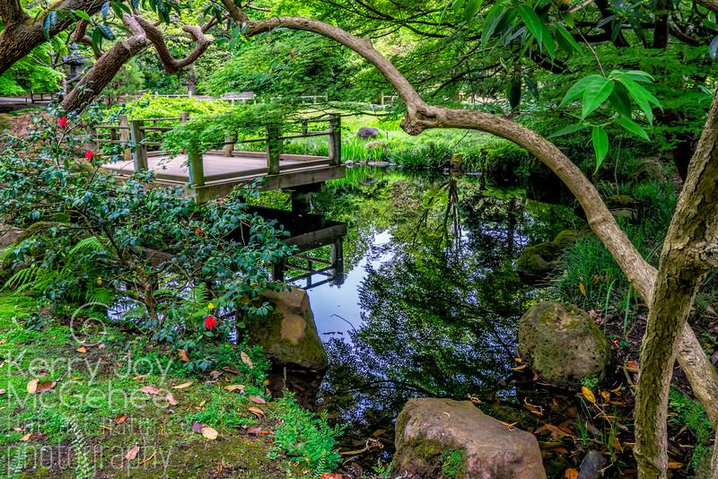 Japanese Meditative Garden