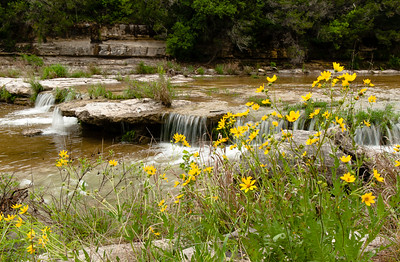 BULL CREEK IN THE SPRING
