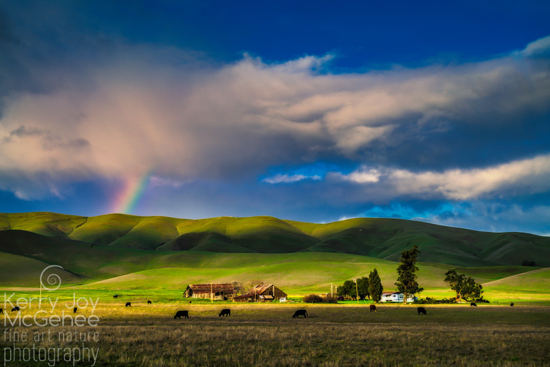 Livermore Rainbow